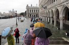 [Video] Thành phố Venice ngập lụt khiến du khách tháo chạy