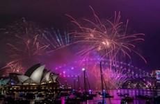 Thành phố Sydney sẽ tổ chức lễ đón Tết Nguyên đán 2020 lớn nhất