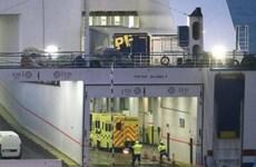 [Video] Ireland tìm thấy 16 người trong một chiếc xe tải từ Pháp