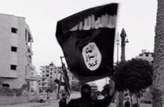 Chính phủ Hà Lan thắng kiện về việc hồi hương con cái thành viên IS