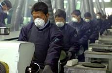 Kinh tế Hàn Quốc đón nhận nhiều thông tin kém khả quan