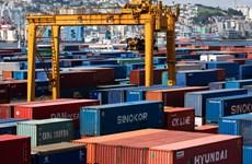 Hàn Quốc: Xuất khẩu giảm tháng thứ 12 liên tiếp do xung đột thương mại