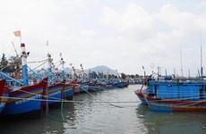 Khẩn trương tìm kiếm ngư dân mất tích trên vùng biển Phú Yên