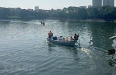 Hà Nội sẽ công khai kết luận thanh tra về chế phẩm làm sạch ao hồ