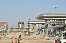 Tập đoàn dầu mỏ Aramco huy động 25,6 tỷ USD trong đợt IPO đầu tiên
