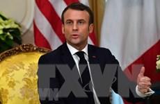 Tổng thống Pháp loại trừ khả năng hoãn kế hoạch cải cách hưu trí