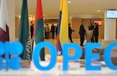 Nhân tố OPEC+ có thể chi phối thị trường dầu thế giới năm 2020
