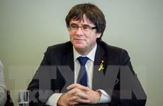 Cựu Thủ hiến vùng Catalonia của Tây Ban Nha tiếp nhận ghế nghị sỹ EP