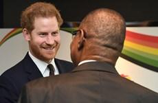 Những hoạt động cuối cùng trên cương vị Hoàng tử của Harry