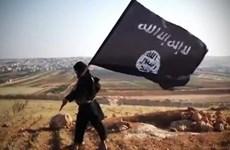 Maroc bắt giữ 6 đối tượng tình nghi liên quan đến tổ chức IS
