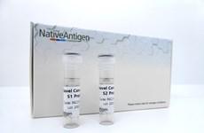 Công ty Anh chào bán các kháng nguyên của virus corona chủng mới