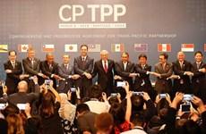 Chính phủ Thái Lan nghiên cứu khả năng tham gia CPTPP
