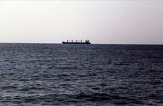 Ukraine phản đối Nga bắt giữ tàu đánh cá ở Biển Azov