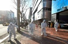 Hàn Quốc: Thành phố Daegu trong tình trạng báo động do COVID-19