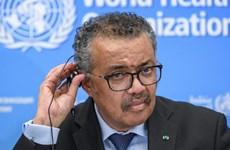 WHO khuyến cáo thế giới chuẩn bị cho nguy cơ xảy ra một đại dịch