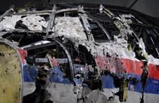 Hà Lan: Bắt đầu xét xử vụ tai nạn máy bay MH17 của Malaysia Airlines