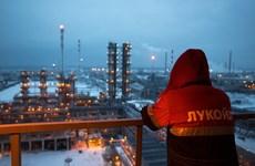 Nước Nga tìm cách đối phó với cơn khủng hoảng giá dầu
