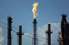 Giá dầu Brent đã chạm mức 'đáy' kể từ tháng 11/2002