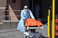 Mỹ: Số ca tử vong vượt mốc 10.000 người, kéo dài phong tỏa New York