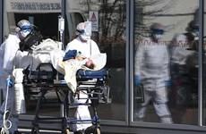 Anh và Pháp ghi nhận thêm ca tử vong, Na Uy tuyên bố khống chế dịch