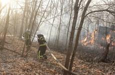 Ukraine: Cháy rừng vẫn tàn phá khu vực gần nhà máy hạt nhân Chernobyl