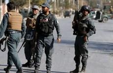 Afghanistan: Đụng độ với Taliban khiến hàng chục người thiệt mạng