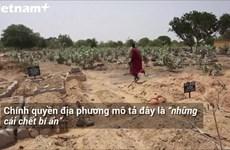 [Video] Dịch bệnh lạ gây chết người hàng loạt tại Nigeria