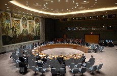 """Mỹ và Trung Quốc """"bất đồng về WHO"""" trong dự thảo của Hội đồng Bảo an"""