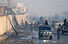 Taliban bất ngờ tuyên bố ngừng bắn 3 ngày tại Afghanistan
