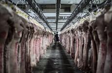 Nhập khẩu thịt lợn của Trung Quốc tăng gần gấp đôi trong tháng 4