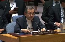 Đại sứ Iran chỉ trích Mỹ kêu gọi kéo dài lệnh cấm vận vũ khí của LHQ