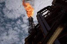 Giá dầu châu Á tăng nhờ kỳ vọng nhu cầu phục hồi nhanh chóng
