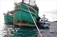 Kiên Giang: Điều tra xử lý vụ mua bán, vận chuyển dầu trái phép