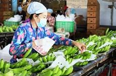 Tuyến vận tải biển mới sẽ thúc đẩy xuất khẩu trái cây Việt Nam