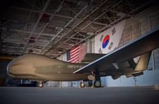 Hàn Quốc sắp triển khai máy bay không người lái Global Hawk