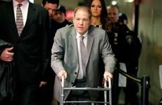 Các nạn nhân của H.Weinstein được bồi thường gần 20 triệu USD
