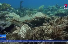 [Video] Rác thải trên biển có thể tăng gấp 3 lần vào năm 2040