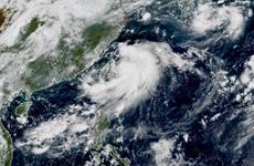 Trung Quốc và Triều Tiên đồng loạt ban bố cảnh báo bão Bavi