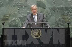 TTK LHQ kêu gọi áp dụng công nghệ kỹ thuật số hoàn thành SDGs