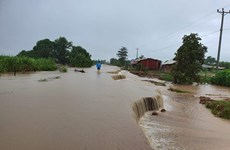 Mưa lũ gây nhiều thiệt hại cho các tỉnh Bắc và Tây Bắc Campuchia
