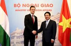 Việt Nam trong chính sách 'hướng Đông' của Hungary