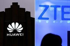 Thụy Điển cấm các thiết bị Huawei và ZTE trong xây dựng mạng 5G
