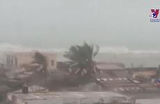 [Video] Cảnh gió giật dữ dội khi bão số 9 đổ bộ vào đảo Lý Sơn
