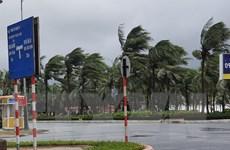 Bão số 9: Gió giảm khi vào vùng biển từ Quảng Nam đến Bình Định
