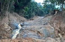 [Video] Quảng Trị: Núi sạt lở, cây rừng nằm ngổn ngang đầy đường