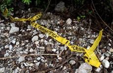 Mexico: Phát hiện nhiều hố chôn tập thể tại bang Guanajuato