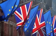 Bất đồng vẫn còn trong đàm phán thương mại giữa EU và Anh