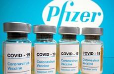 Telegraph: Anh có thể chấp thuận vắcxin của Pfizer trong tuần này