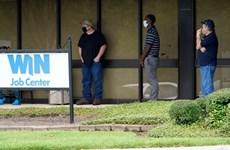 Mỹ: Số đơn xin trợ cấp thất nghiệp mới có xu hướng giảm