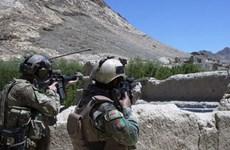 Afghanistan: Giao tranh ác liệt, hơn 50 tay súng Taliban bị tiêu diệt